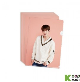 SEVENTEEN - CLEAR FILE (PINK)