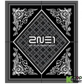 2NE1 - 1st Live Concert...