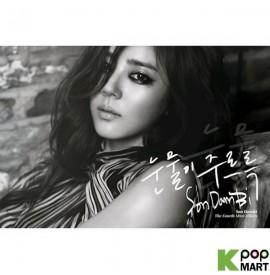 Son Dam Bi Mini Album Vol....