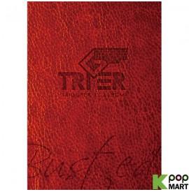 TRIGER Single Album Vol. 1...